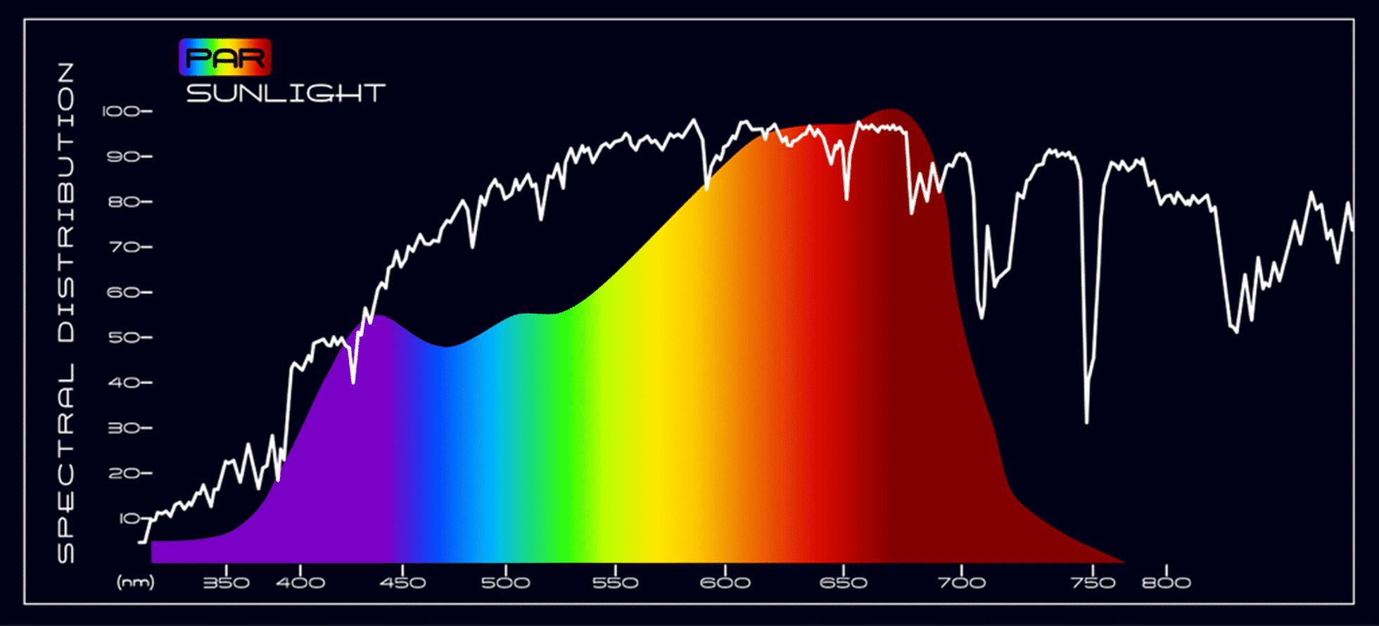 PAR Sunlight Spectral Comparison