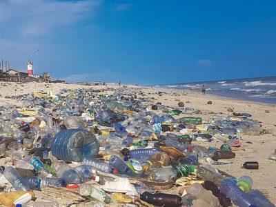 Eco Shame | NowMi
